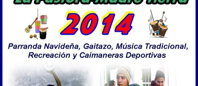 Fiesta Navideña 2014