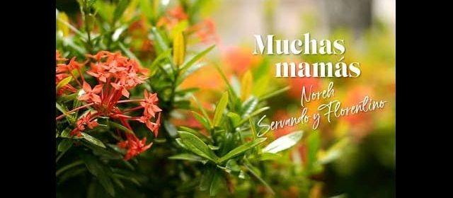 """NOREH JUNTO A SERVANDO Y FLORENTINO ESTRENAN EL VIDEO DE """"MUCHAS MAMÁS"""""""